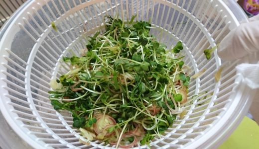 夏バテ解消レシピ「五味薬味」おすすめの食べ方5選!